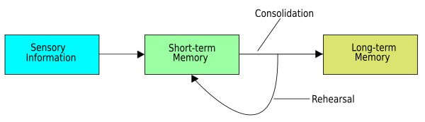 Scheme on long term and short term memory