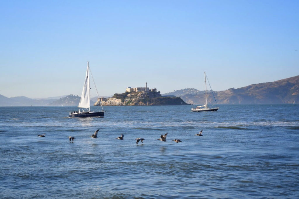 Alcatraz in the distance, San Francisco 3-day tour