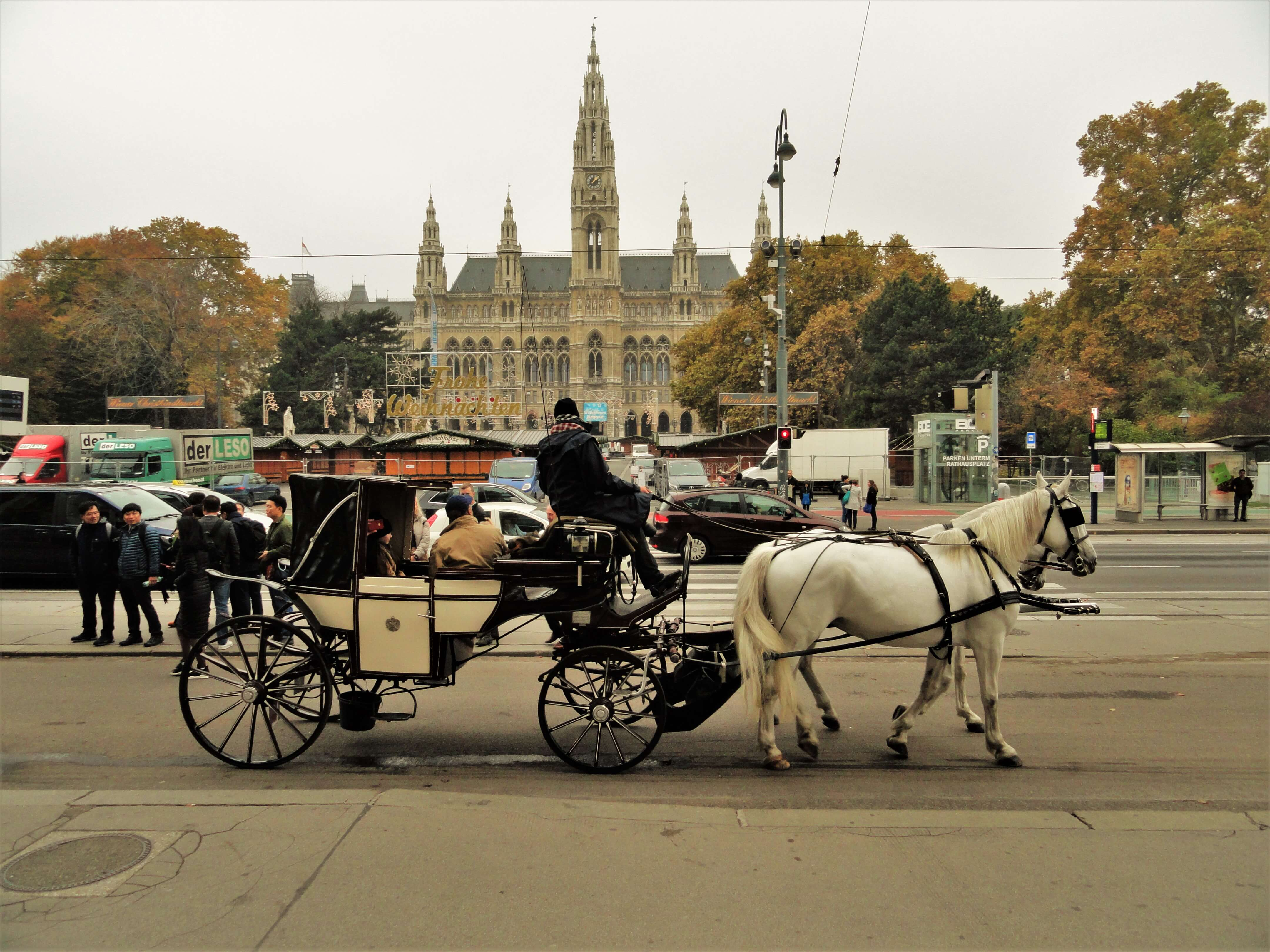 Vienn city hall horse, getting around the city