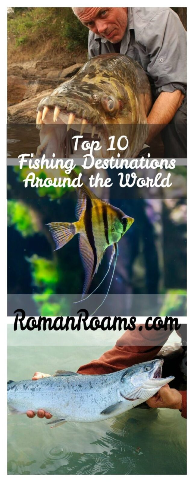 Best fishing destinations around the world to have the most amazing fishing experience