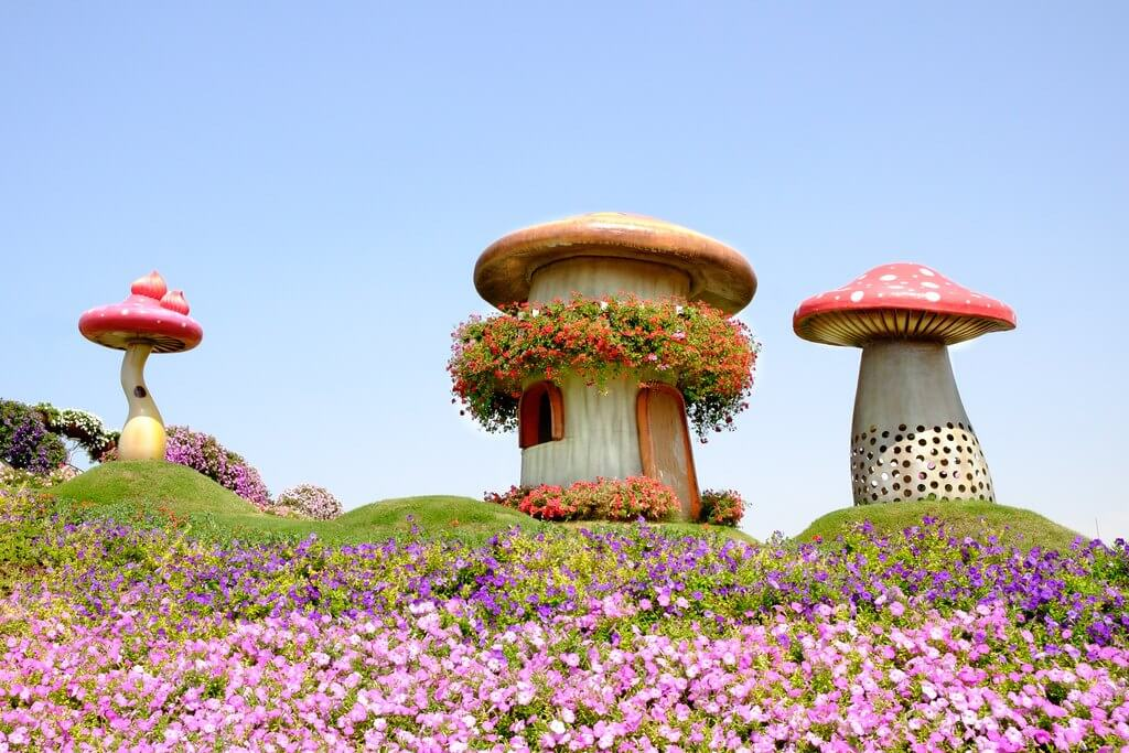 Dubai Miracle garden, places to visit