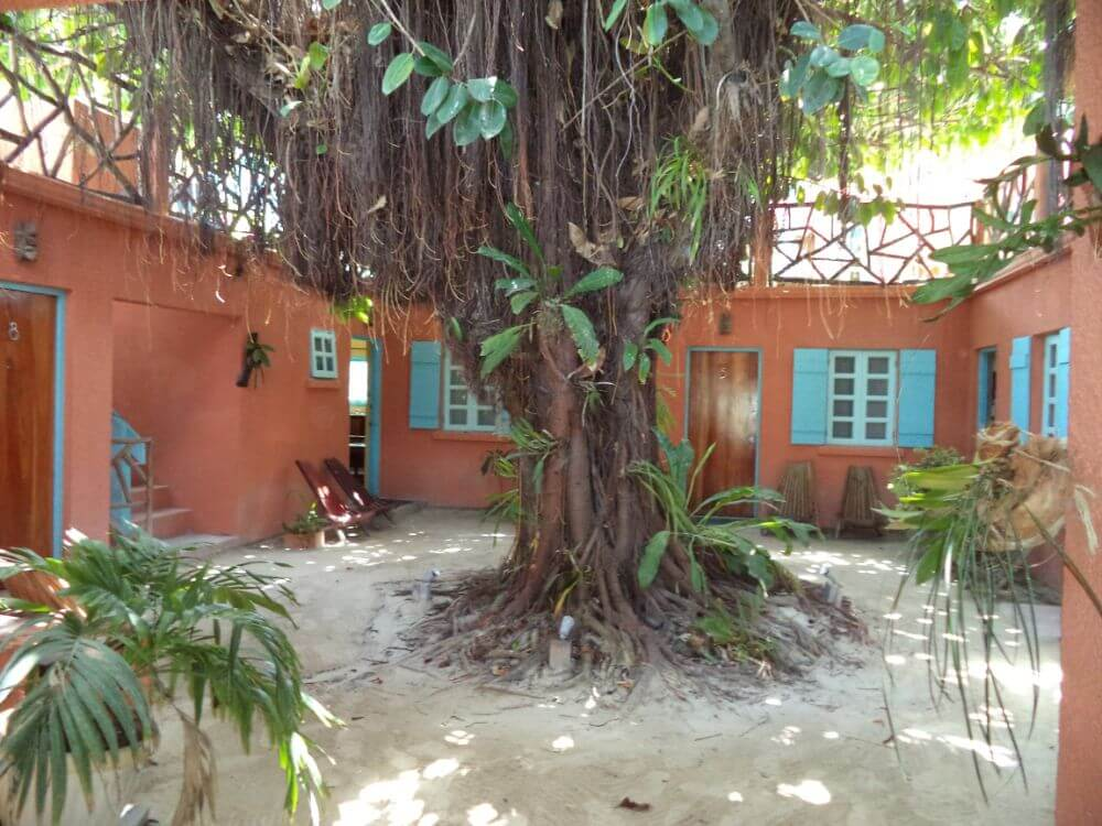 Budget accommodation in Belize, hotel in the trees