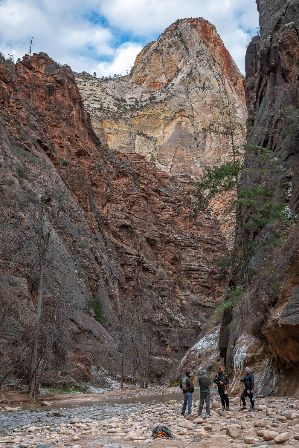 people near the river between mountains in zion national park