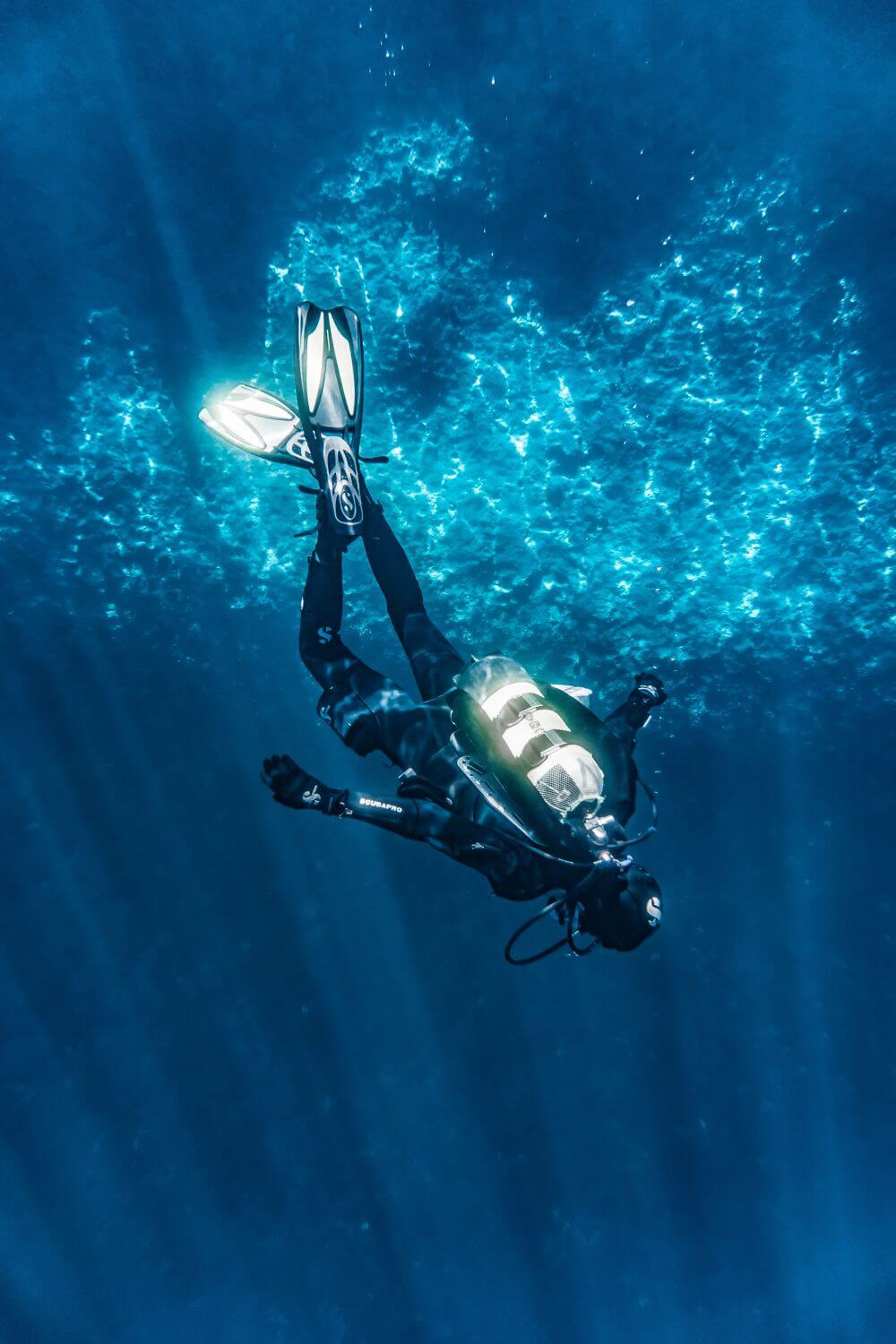 Diving in Fitzroy Island in a day