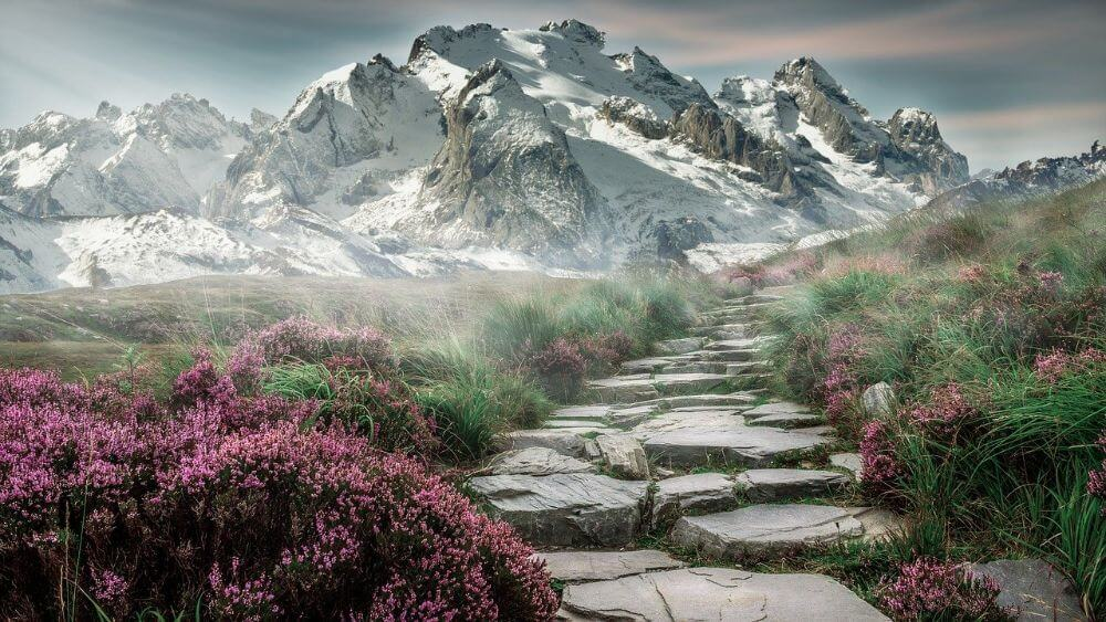 Mountain landscape green grass and flowers Asia