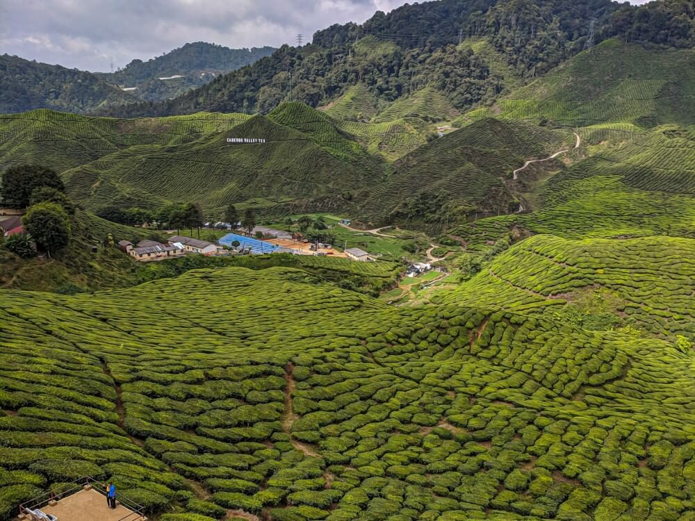 Pahang green fields and hills in Malaysia, hidden gem